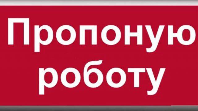 Специалисты сервиса «Пропоную работу» представили советы по поиску работы в Киеве