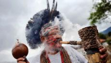 За год копы конфисковали наркотиков на 23 млрд грн