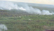 Спасатели успокаивают, что сильный пожар в Чернобыле не грозит загрязнением