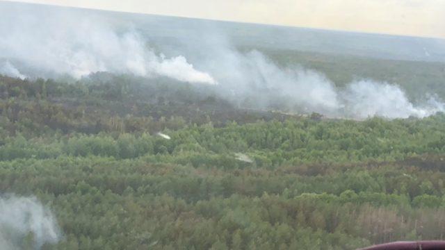 В Чернобыле возгорание не могут потушить на 1,5 га