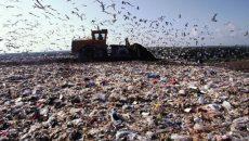 Во Львовской области чиновник занимался фиктивным вывозом мусора