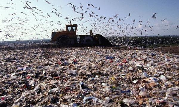 Киевспецтранс планирует построить мусороперерабатывающий завод
