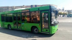 Житомир закупает автобусы в Беларуси
