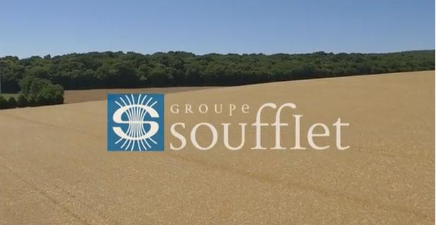 ЕБРР может дать французской агрогруппе кредит для работы в Украине