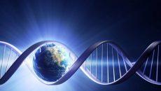 Ученые сохранят ДНК 66 тысяч видов позвоночных