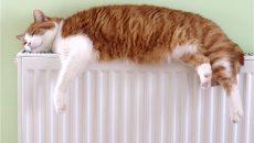 В декабрьских платежках должны быть снижены тарифы на отопление, - Зеленский