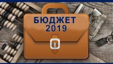 Бюджет на 2019 год официально опубликован в