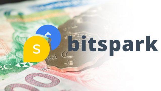 Стартап Bitspark выпустил стейблкоин