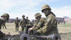 В Эстонии проходят масштабные военные учения
