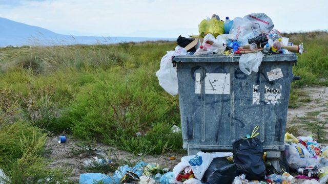 Украинские инженеры запустят приложение EcoHike для экотуризма в Карпатах