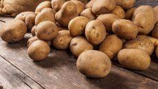 Украина установила исторический рекорд по импорту картофеля