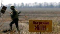 Украина находится среди лидеров по количеству жертв от мин