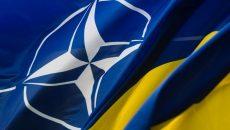 Членство Украины в НАТО: МИД назвал ключевые шаги для достижения цели