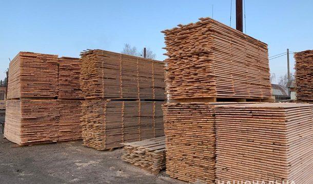 Закарпатье будет продавать необработанную древесину через Prozorro