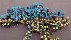 В Украине стартовала пробная онлайн-перепись населения, – Госстат