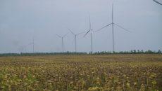 Пересмотр «зеленого» тарифа — безответственность государства перед инвесторами, — эксперт