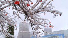Энергоблок №1 Ривненской АЭС отключен от энергосети