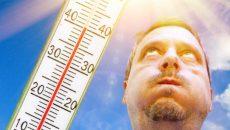 Период с 2020 по 2024 годы может стать самым жарким пятилетием за всю историю наблюдений