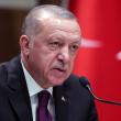 Эрдоган попросил Путина не препятствовать действиям турецких сил против Асада