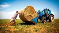 Кабмин создал фонд для кредитования фермеров