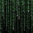 В Украине запустили «гринкарту» для зарубежных IT-специалистов