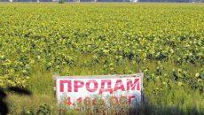 Рада приняла закон об открытии рынка земли в Украине