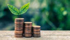 В январе отчисления эконалога в госбюджет составили почти 50 млн грн