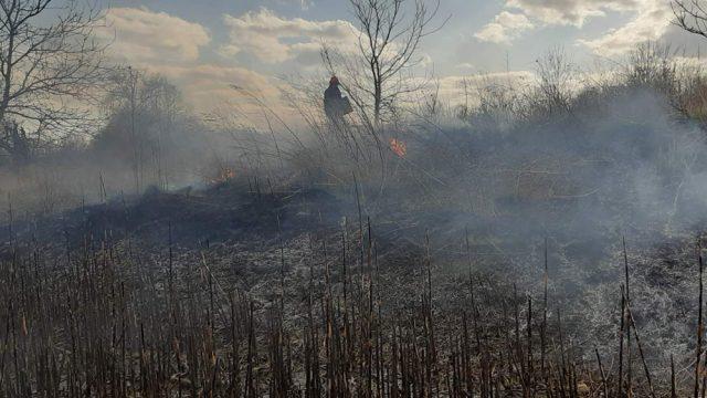 Україна у вогні: чому збільшення штрафів за підпали нічого не змінить