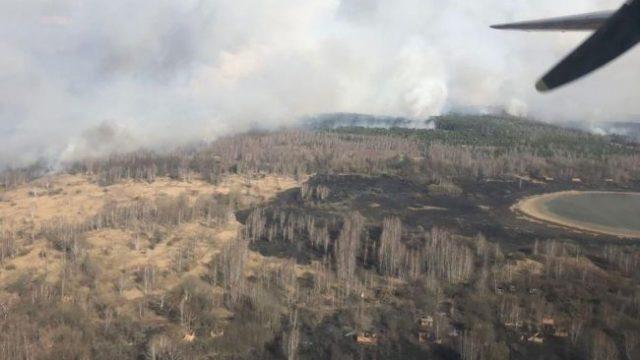 В Чернобыльской зоне продолжает гореть лес