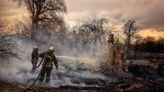 Пострадавшим от пожаров на Житомирщине выплатят компенсации