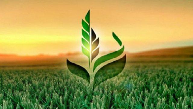 «Аграрный фонд» профинансировал аграриев на 233 миллиона