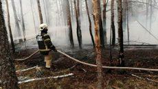 В Чернобыльской зоне и Житомирской области продолжают тушить торфяники