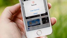 Google и Apple создали ресурс, уведомляющий о потенциальном заражении Covid-19