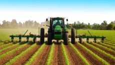 Экономический протекционизм: Минэкономики может ввести квоты на импорт удобрений