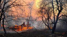 В Чернобыльской зоне вспыхнул новый пожар