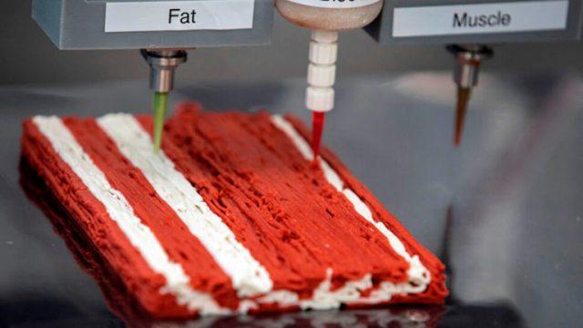Израильский стартап разрабатывает 3D-принтеры для искусственного мяса
