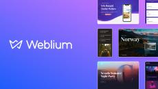 Лучшие идеи для стартапа: советы от Weblium