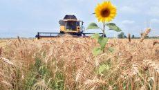 Президент подписал закон о сельскохозяйственной кооперации