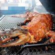 В украинских магазинах может появиться мясо крокодила