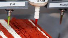 Израильский стартап продает принтеры для печати стейков
