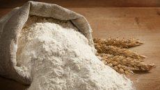 Украина уже экспортировала около 60 тысяч тонн муки