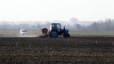 Аграрии уже засеяли свыше 2,2 миллиона гектаров озимых зерновых