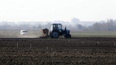 Аграрии засеяли озимыми три четверти запланированных площадей