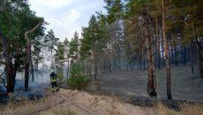 Пожары на Луганщине: руководство управления ГСЧС подозревают в халатности