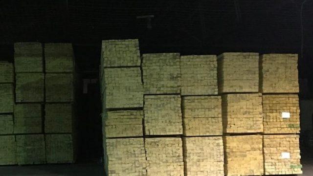 СБУ разоблачила преступную группировку на нелегальном экспорте древесины