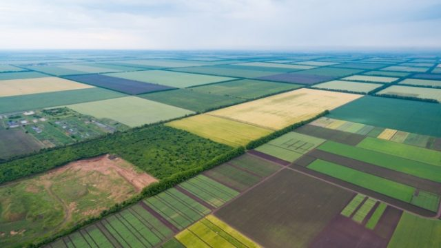 Кабмин разрешил передачу сельхозземель в коммунальную собственность