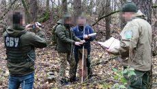 СБУ раскрыла схему незаконной вырубки леса