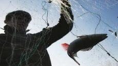 В Украине усилят борьбу против рыбного браконьерства