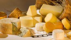 Украина увеличила импорт сыра