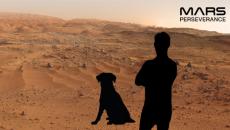 NASA предложило желающим сделать фото на фоне марсианских пейзажей
